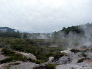 Steaming Hills